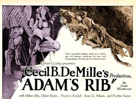 Adam's rib affiche